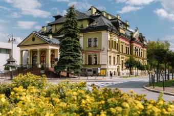zabytkowy budynek oświetlony promieniami słonecznymi, na pierwszym planie kwitnące na żółto krzewy