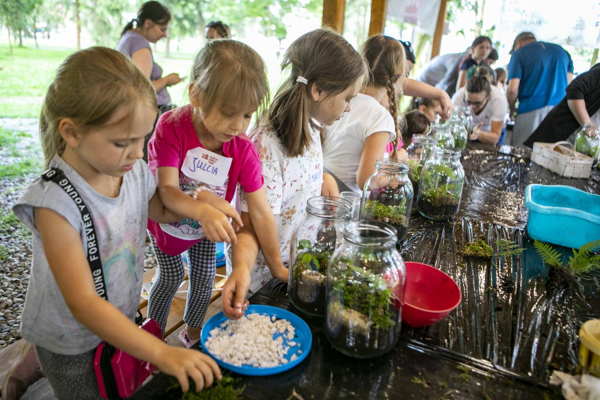 dzieci siedzą przy stołach, wkładają rośliny do słoików wypełnionych ziemią